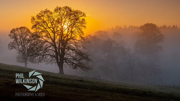 Misty sunset in the Scottish Borders.